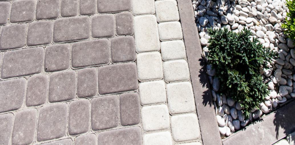 Бруківка львівська біла фото